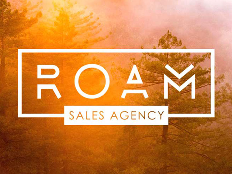 Logo and web design for Roam Sales